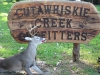 Cutawhiskie_Creek_Outfitters